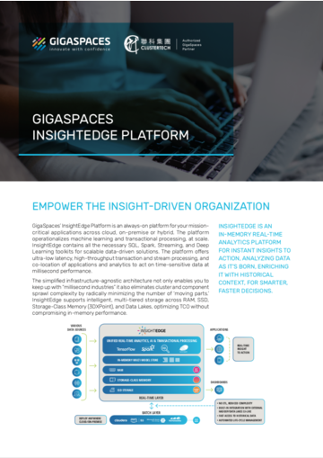 GigaSpaces InsightEdge Platform (英文)